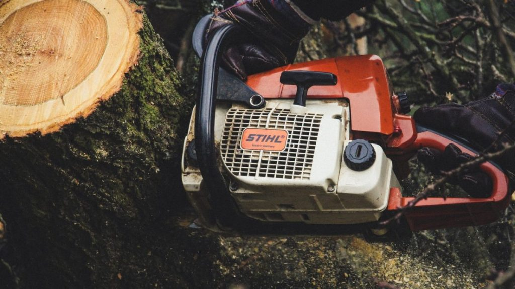 Chainsaw and tree stump